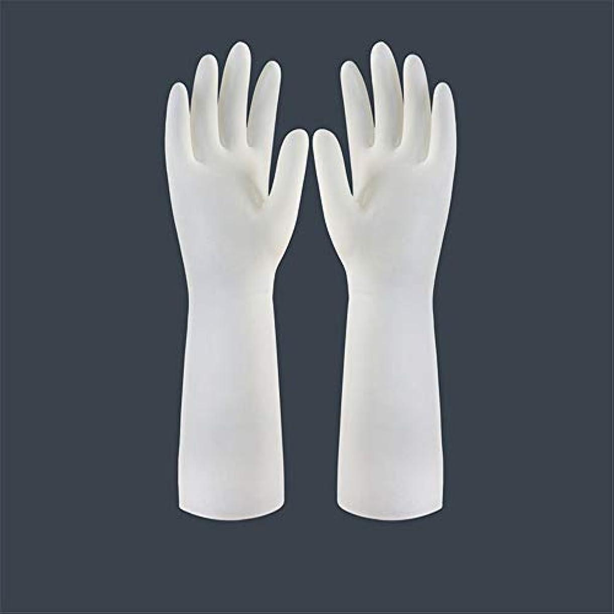 不健康前者性的BTXXYJP キッチン用手袋 手袋 食器洗い 作業 炊事 食器洗い 掃除 園芸 洗車 防水 防油 手袋 (Color : Long-1 pair, Size : L)