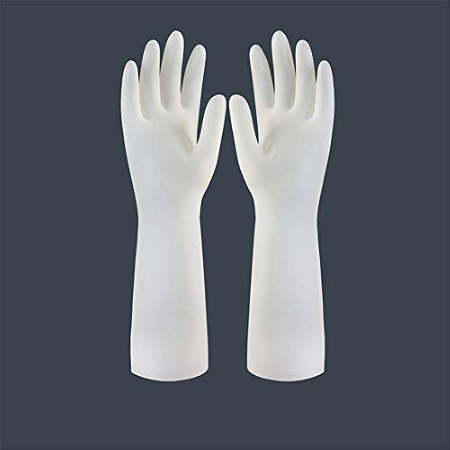 賞賛する割り当てるインストラクターBTXXYJP キッチン用手袋 手袋 食器洗い 作業 炊事 食器洗い 掃除 園芸 洗車 防水 防油 手袋 (Color : Long-1 pair, Size : L)