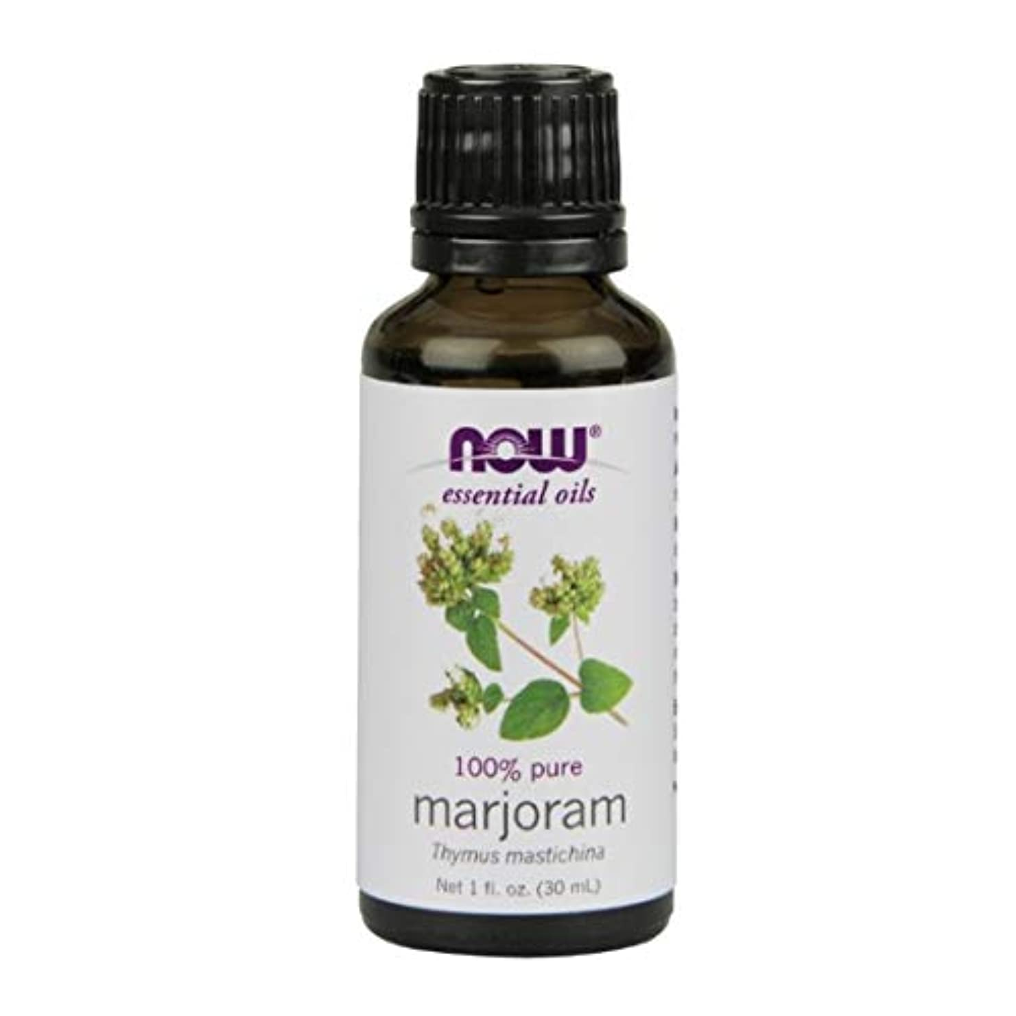 象オーナメント貴重なNow Foods Marjoram Oil 1 fl oz [並行輸入品]
