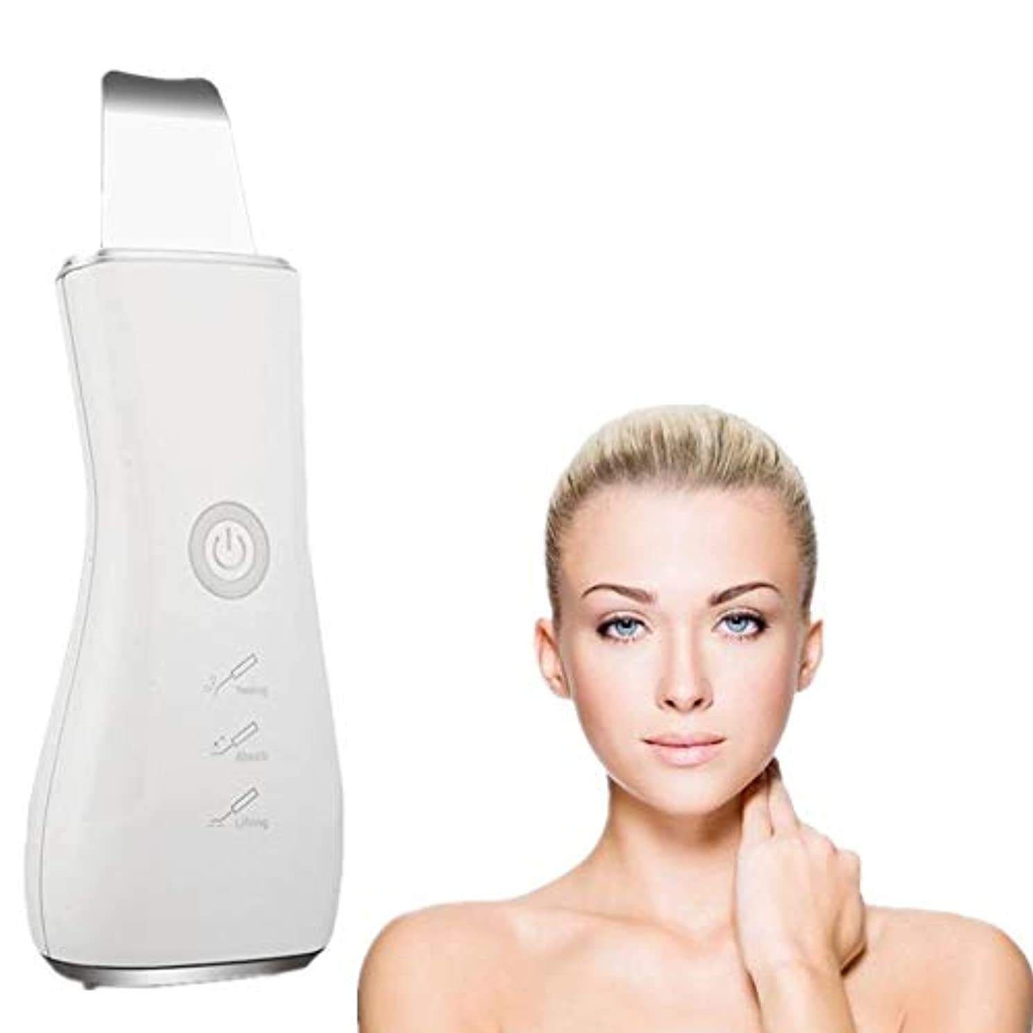 士気鳥偏見顔の皮膚スクラバーブラックヘッドリムーバー毛穴充電式スキンスクラバー光子の若返り美容スキンクリーナーEMSクリーニングイオン導入モードUSB充電式美容ツール、シルバー