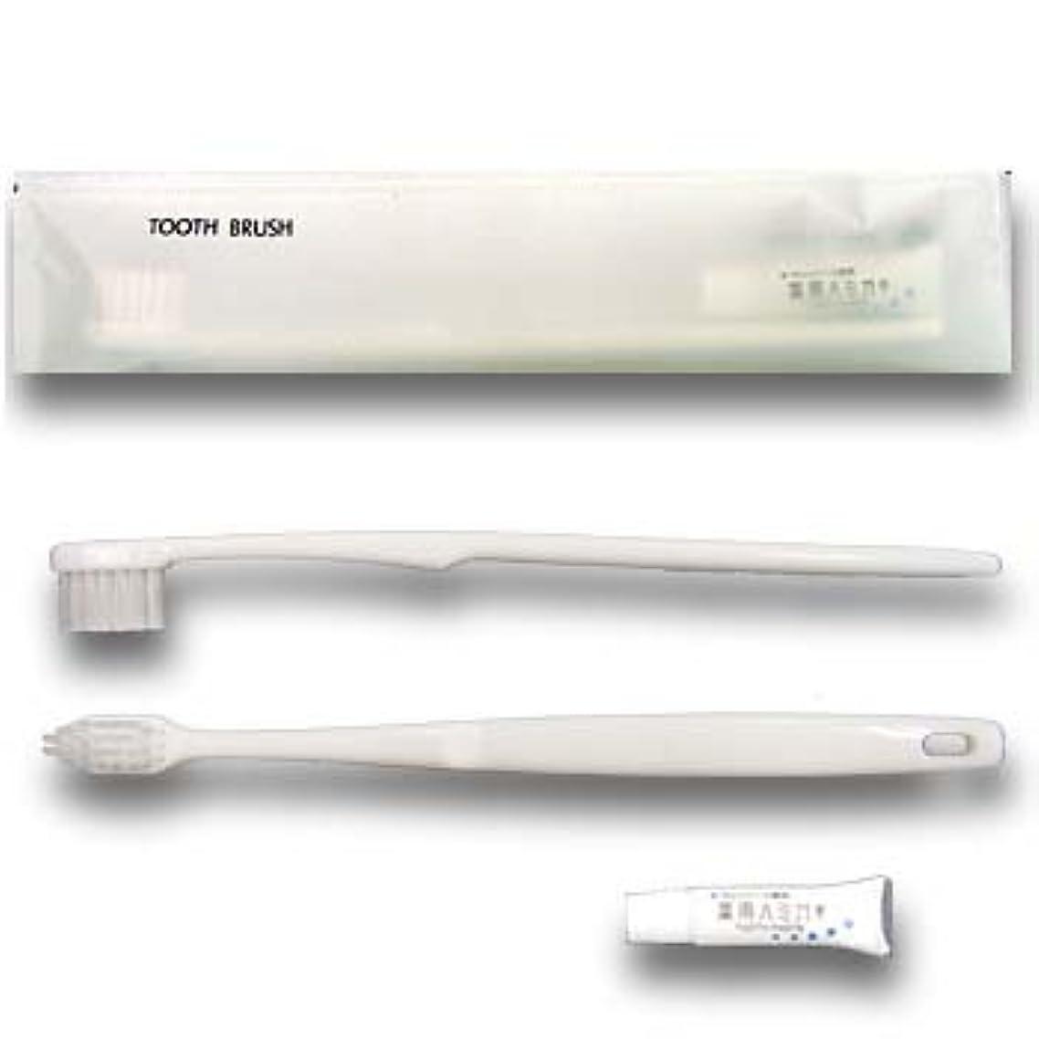 バウンド閉じるミサイルホテル業務用 ハブラシ マットシリーズ24穴3gチューブ付ホワイト(1セット2000本入)