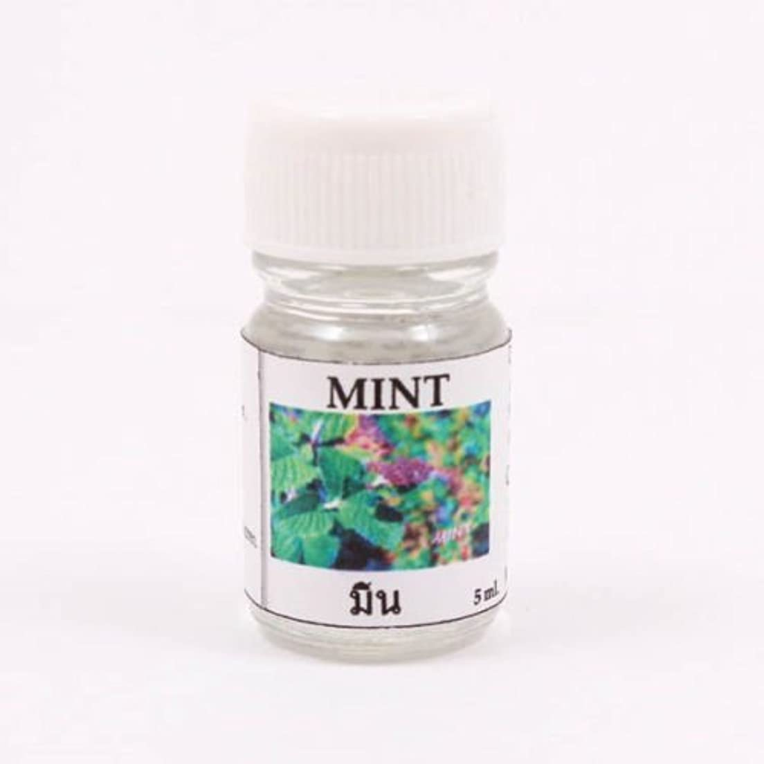 午後サージ市場6X Mint Aroma Fragrance Essential Oil 5ML. (cc) Diffuser Burner Therapy