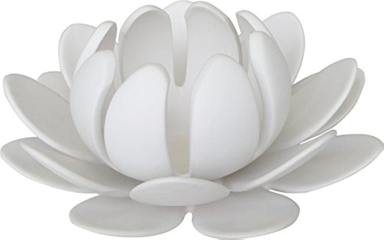 ジョセフバンクスシンカンクリックマルエス 燭台 陶器製三連 ロータス 大 ホワイト
