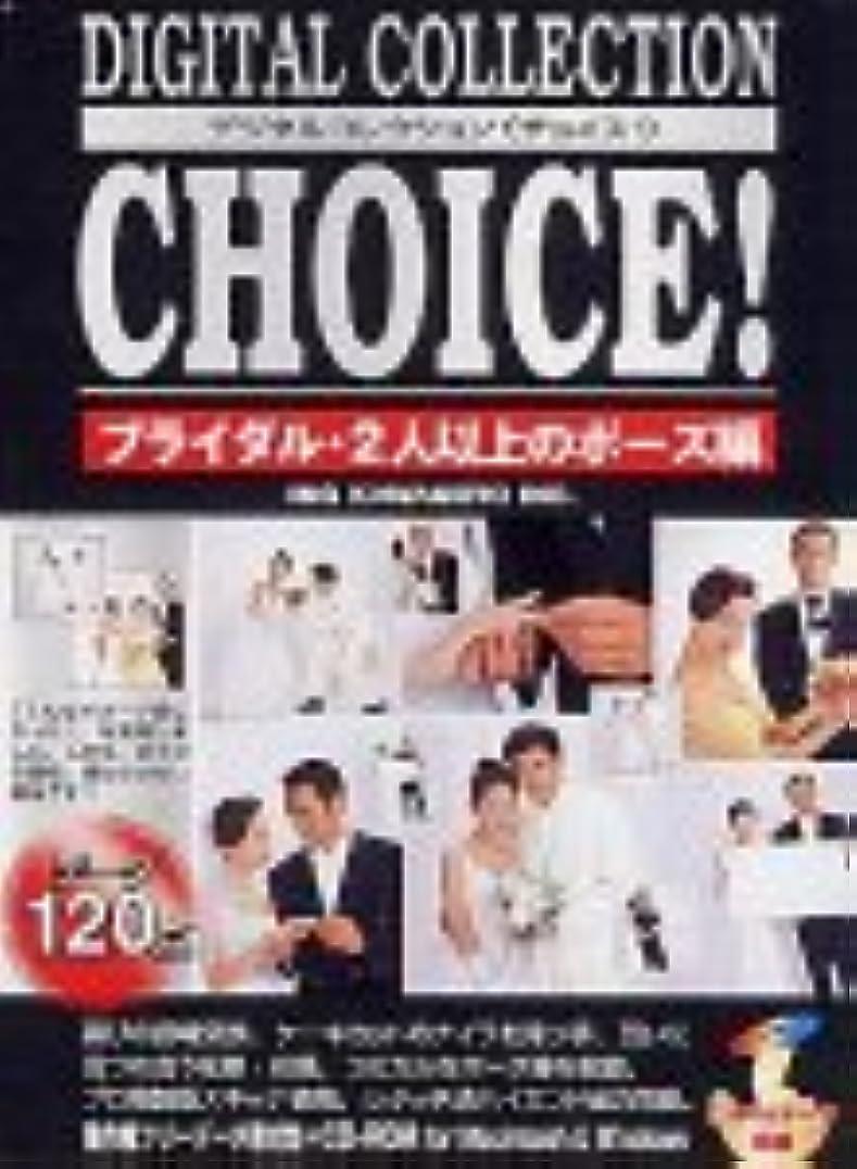 Digital Collection Choice! No.27 ブライダル?2人以上のポーズ編