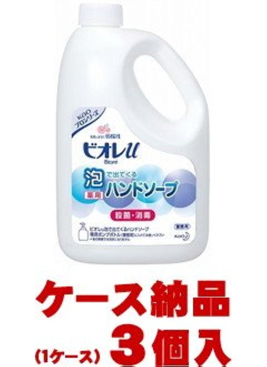 スプリットハグ春【1ケース納品】 花王 ビオレu泡で出てくるハンドソープ 2L×3個入