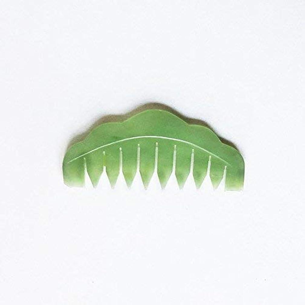 富巻き戻す衝突するJade Chi Comb For Head Massage Therapy [並行輸入品]