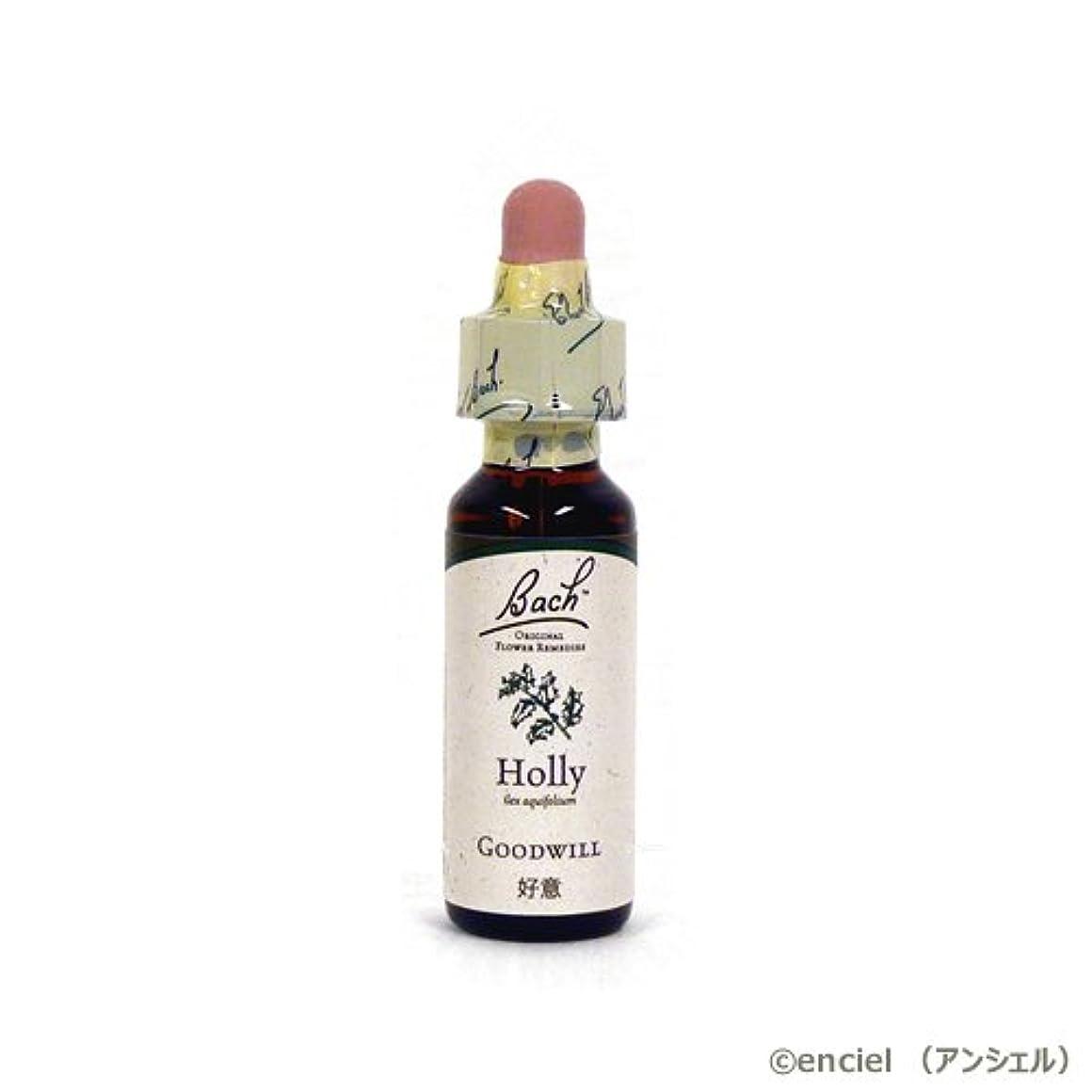 消毒剤不毛の旅行バッチフラワー レメディ ホリー 10ml グリセリンタイプ 日本国内正規品