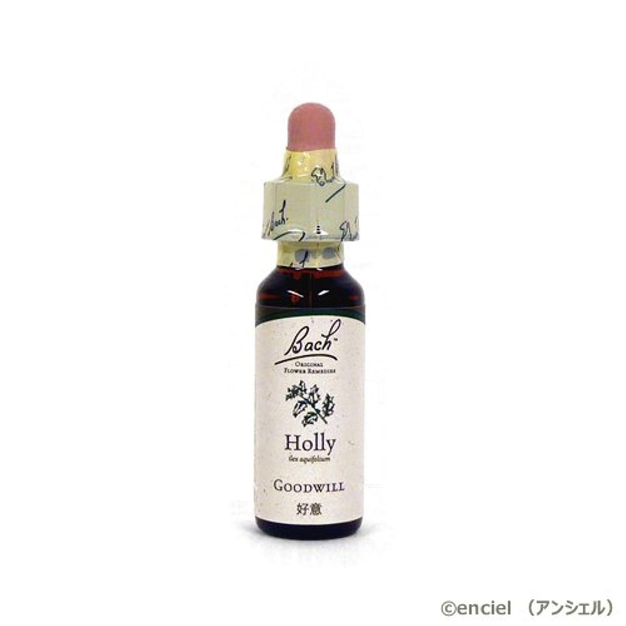 豆革命クレーターバッチフラワー レメディ ホリー 10ml グリセリンタイプ 日本国内正規品