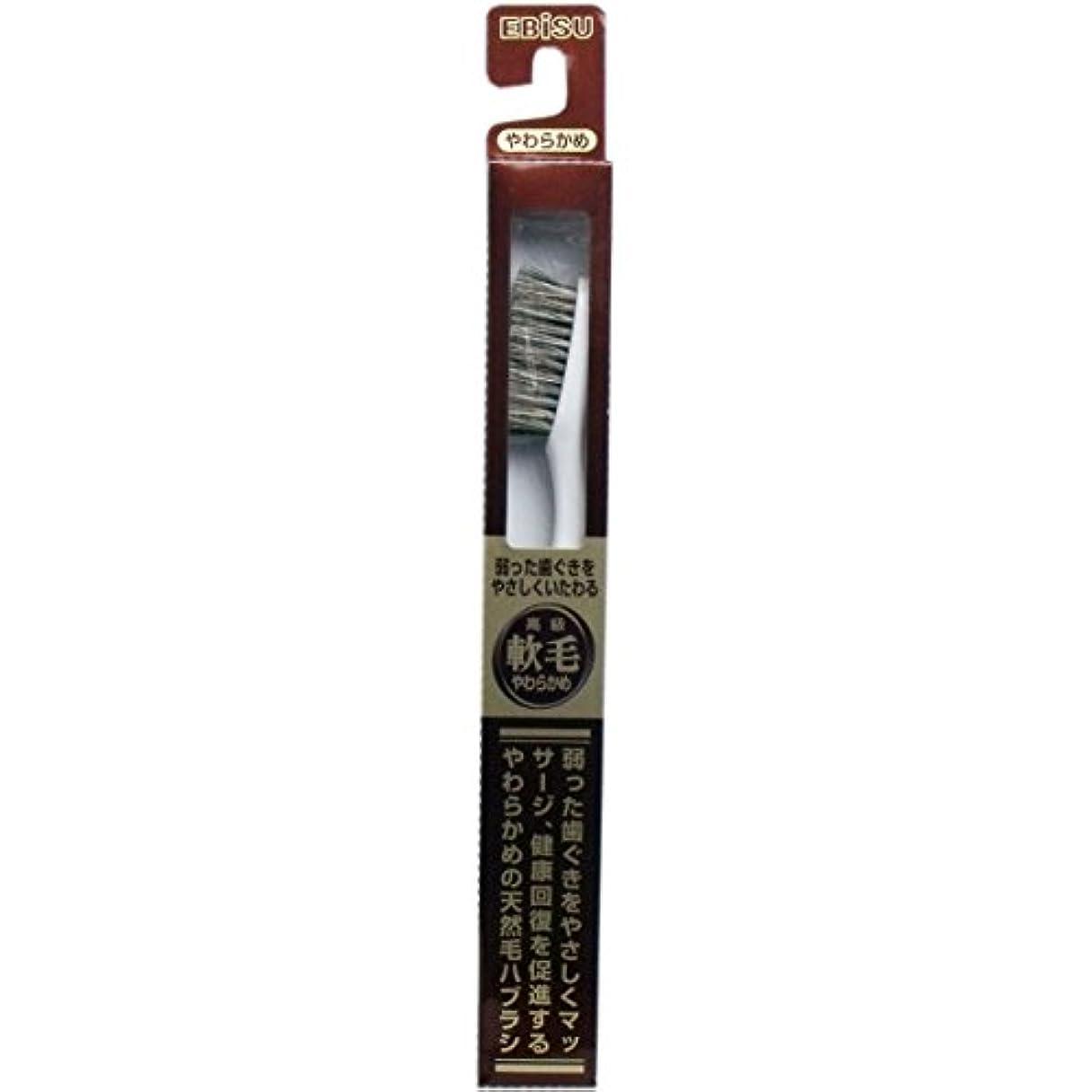 想定するパキスタンメダル【エビス】天然毛軟毛歯ブラシ 500 やわらかめ 1本 ×5個セット