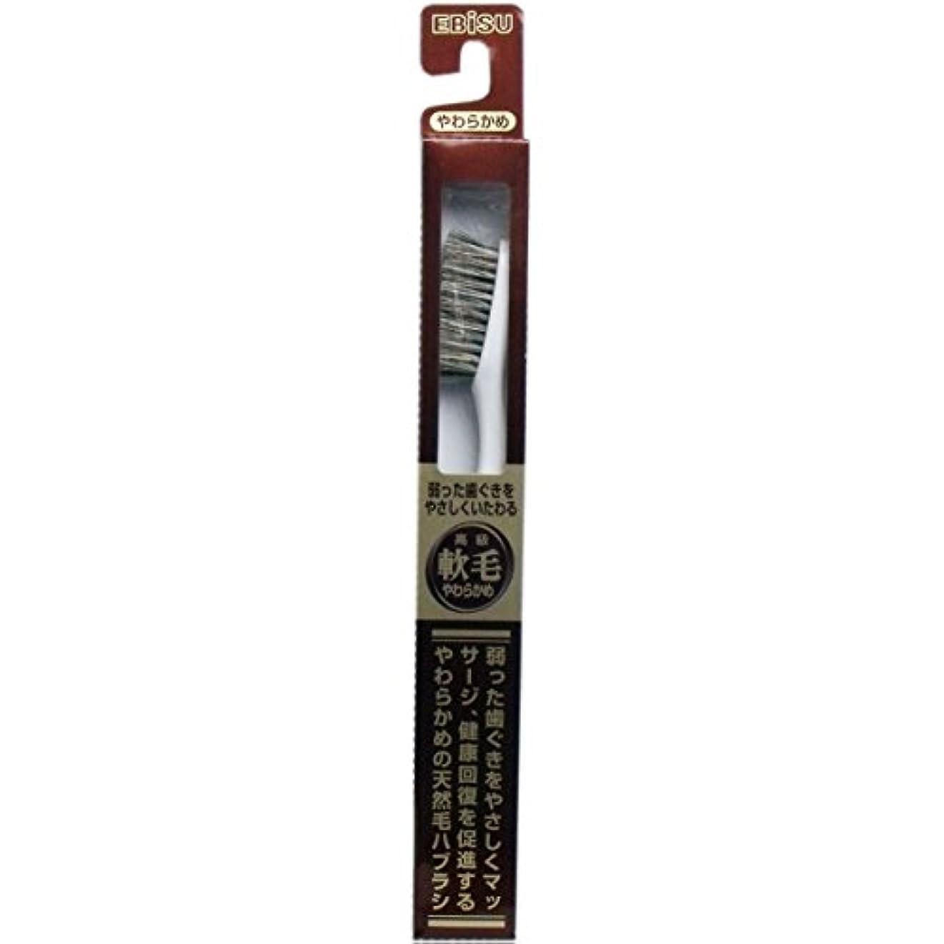 広まった段落かもめ【エビス】天然毛軟毛歯ブラシ 500 やわらかめ 1本 ×10個セット