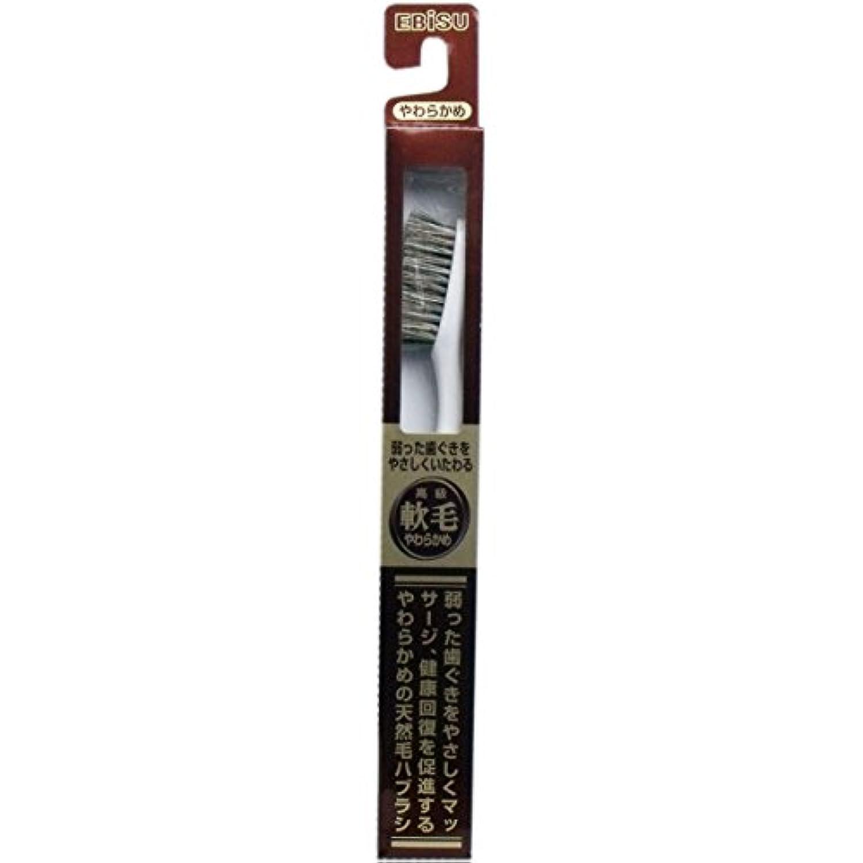 【エビス】天然毛軟毛歯ブラシ 500 やわらかめ 1本 ×3個セット