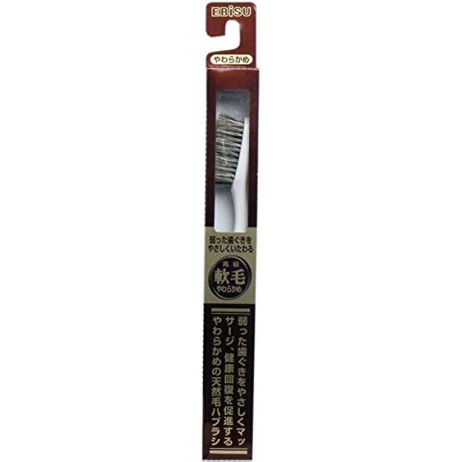 苦難便益定期的な【エビス】天然毛軟毛歯ブラシ 500 やわらかめ 1本 ×3個セット