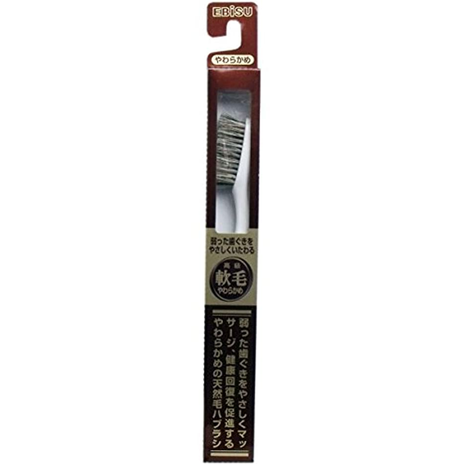 アヒル破壊する潜む【エビス】天然毛軟毛歯ブラシ 500 やわらかめ 1本 ×3個セット