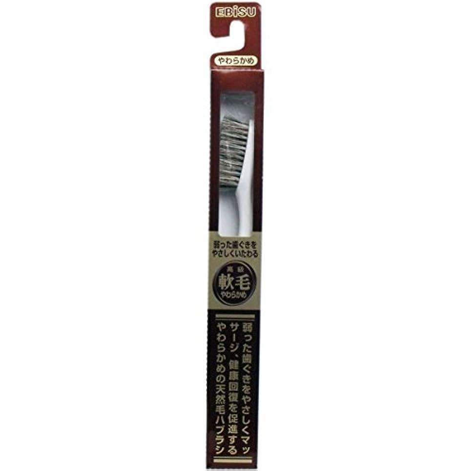 チケット蒸留主人【エビス】天然毛軟毛歯ブラシ 500 やわらかめ 1本 ×10個セット