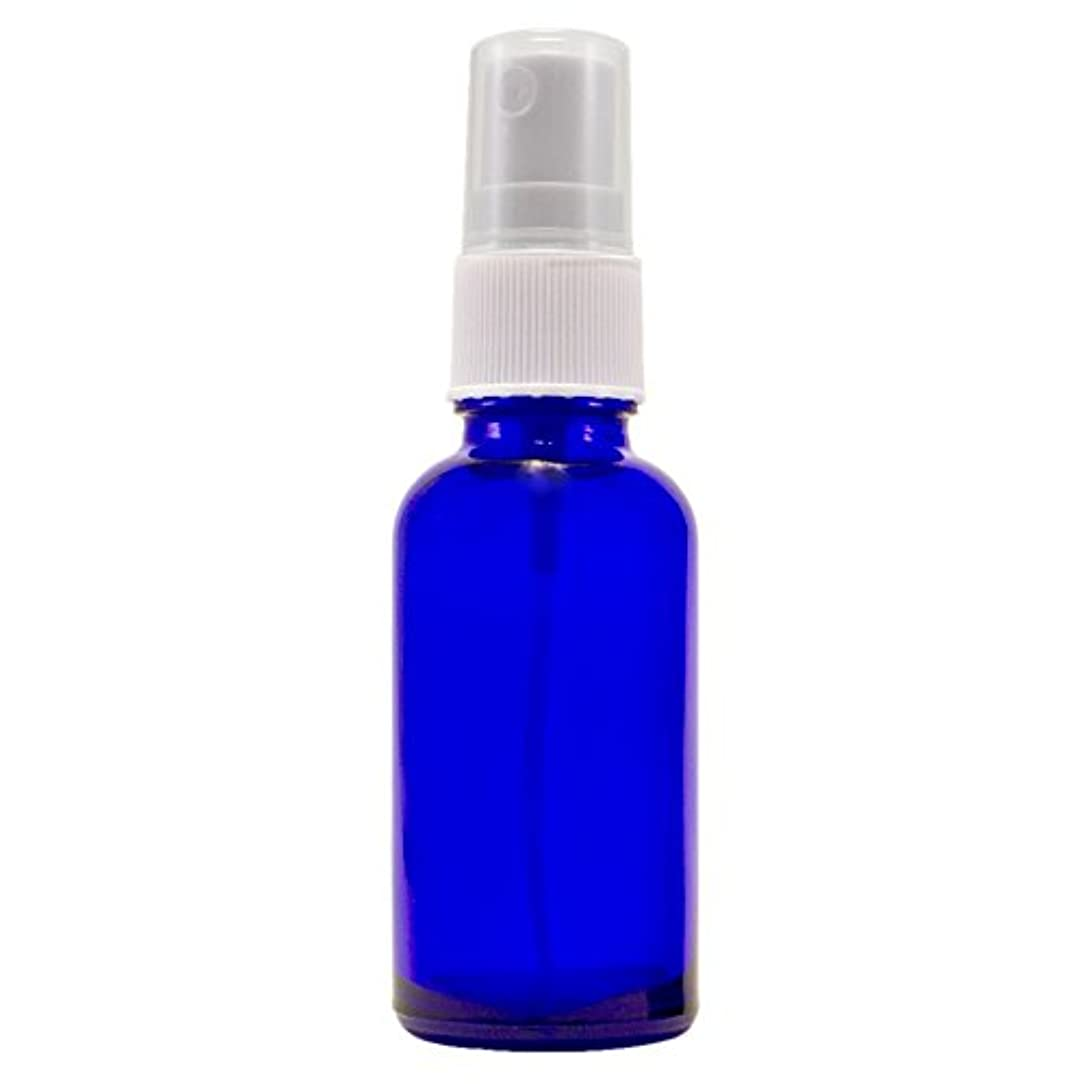 姪性差別引用Wyndmere Naturals - Glass Bottle W/mist Sprayer 4oz, 1 Bottles (1) by Wyndmere Naturals