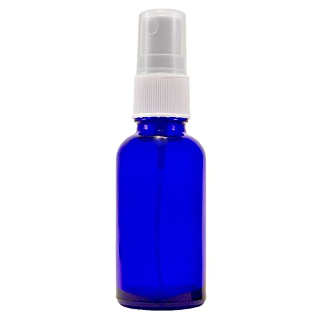 モチーフカテゴリーバルーンWyndmere Naturals - Glass Bottle W/mist Sprayer 4oz, 1 Bottles (1) by Wyndmere Naturals