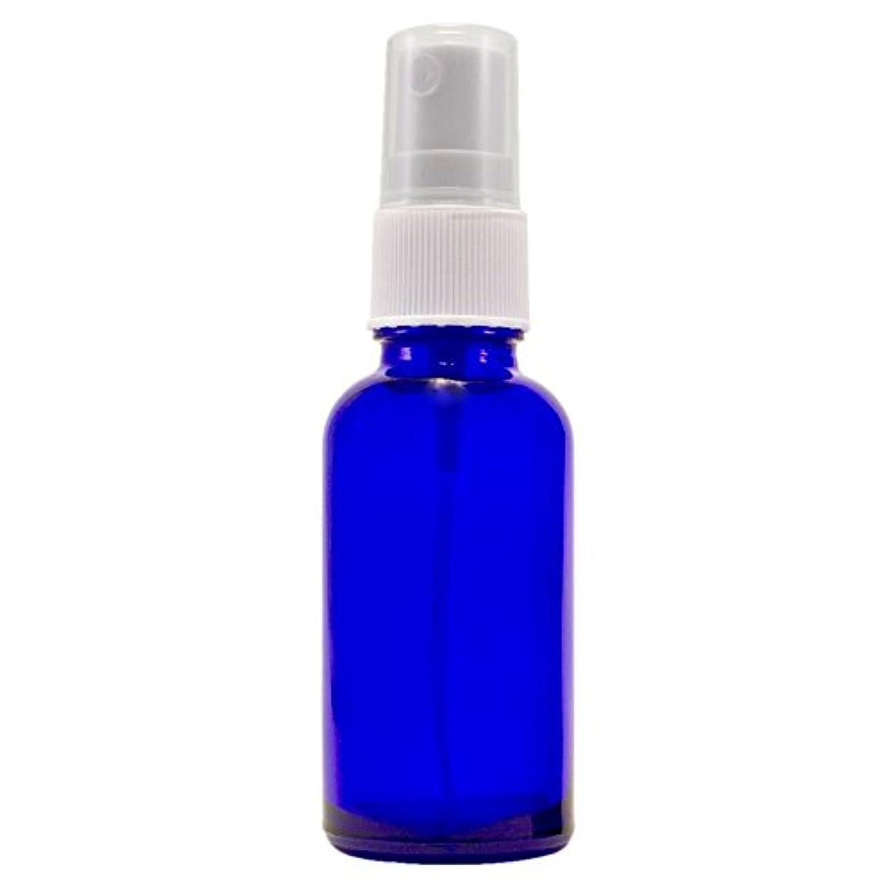 不健康財団ペストリーWyndmere Naturals - Glass Bottle W/mist Sprayer 4oz, 1 Bottles (1) by Wyndmere Naturals