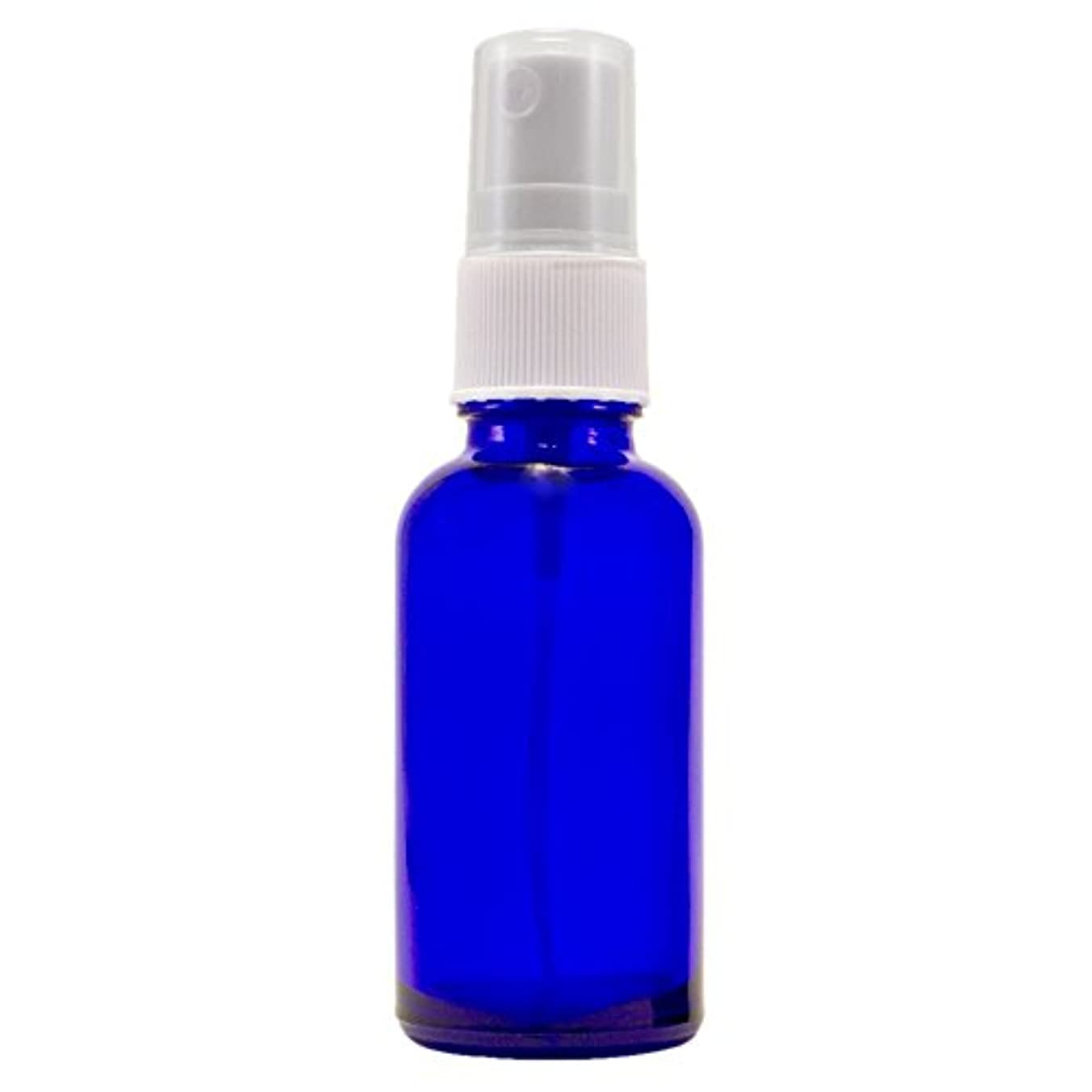 東部最近放牧するWyndmere Naturals - Glass Bottle W/mist Sprayer 4oz, 1 Bottles (1) by Wyndmere Naturals