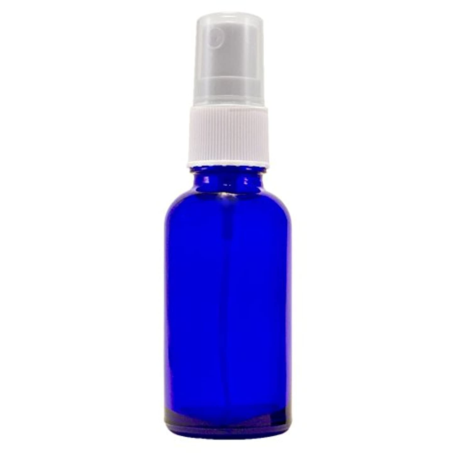 突破口踏みつけローブWyndmere Naturals - Glass Bottle W/mist Sprayer 4oz, 1 Bottles (1) by Wyndmere Naturals