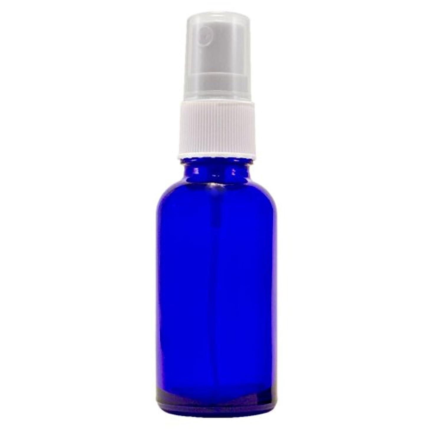 シード失聖域Wyndmere Naturals - Glass Bottle W/mist Sprayer 4oz, 1 Bottles (1) by Wyndmere Naturals