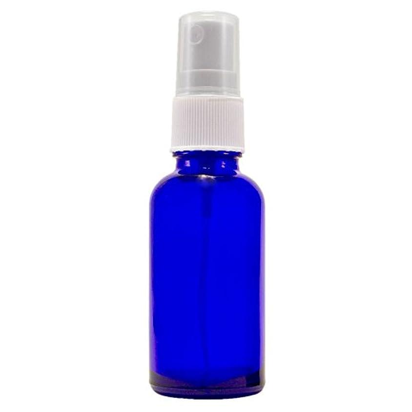 意図逮捕見通しWyndmere Naturals - Glass Bottle W/mist Sprayer 4oz, 1 Bottles (1) by Wyndmere Naturals