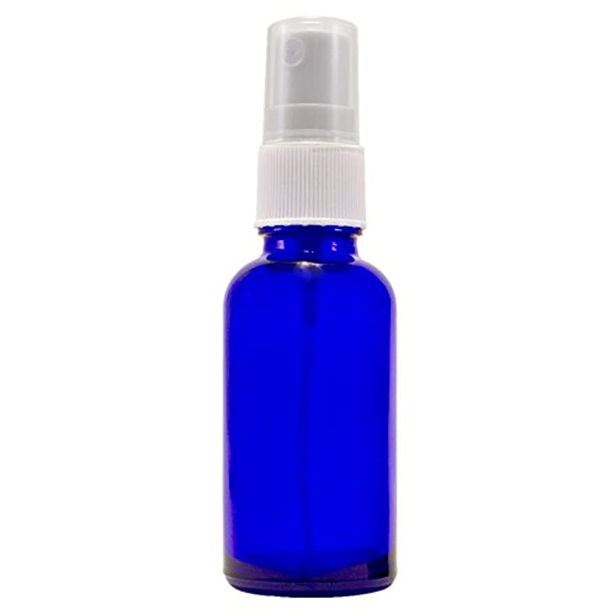 気分が悪い標準シロナガスクジラWyndmere Naturals - Glass Bottle W/mist Sprayer 4oz, 1 Bottles (1) by Wyndmere Naturals