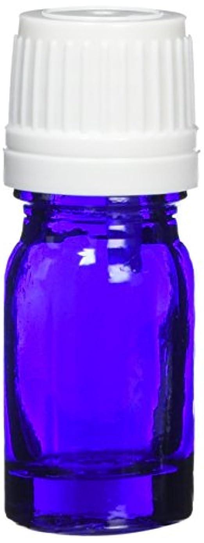 アクティブわざわざブームease 遮光ビン ブルー 5ml×10本