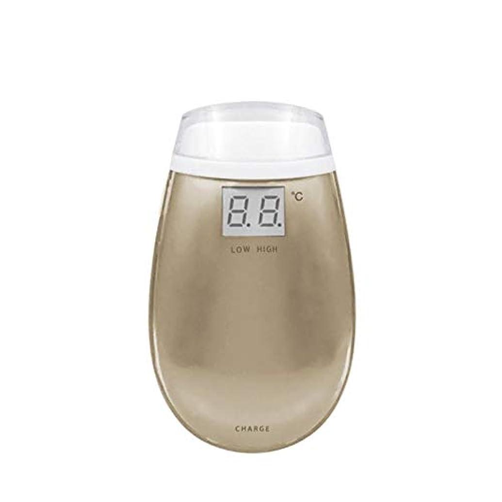褐色特殊配管MTkxsy RF美容機器ホーム電子美容機器肌引き締め美容機器