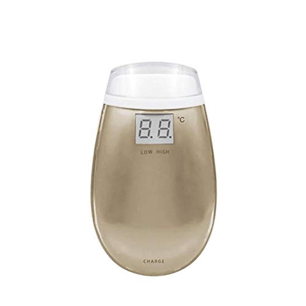 エレクトロニック合金ゴミ箱KYAWJY RF美容機器ホーム電子美容機器肌引き締め美容機器