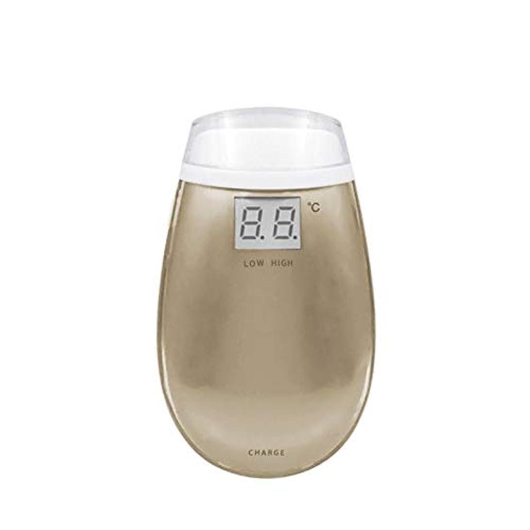 氷推定バックアップCdket RF美容機器ホーム電子美容機器肌引き締め美容機器