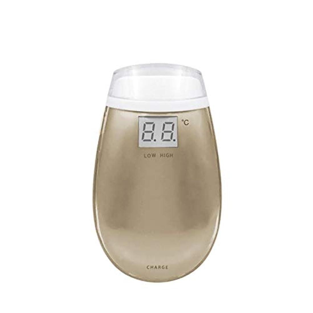 同情的マウント維持Cdket RF美容機器ホーム電子美容機器肌引き締め美容機器