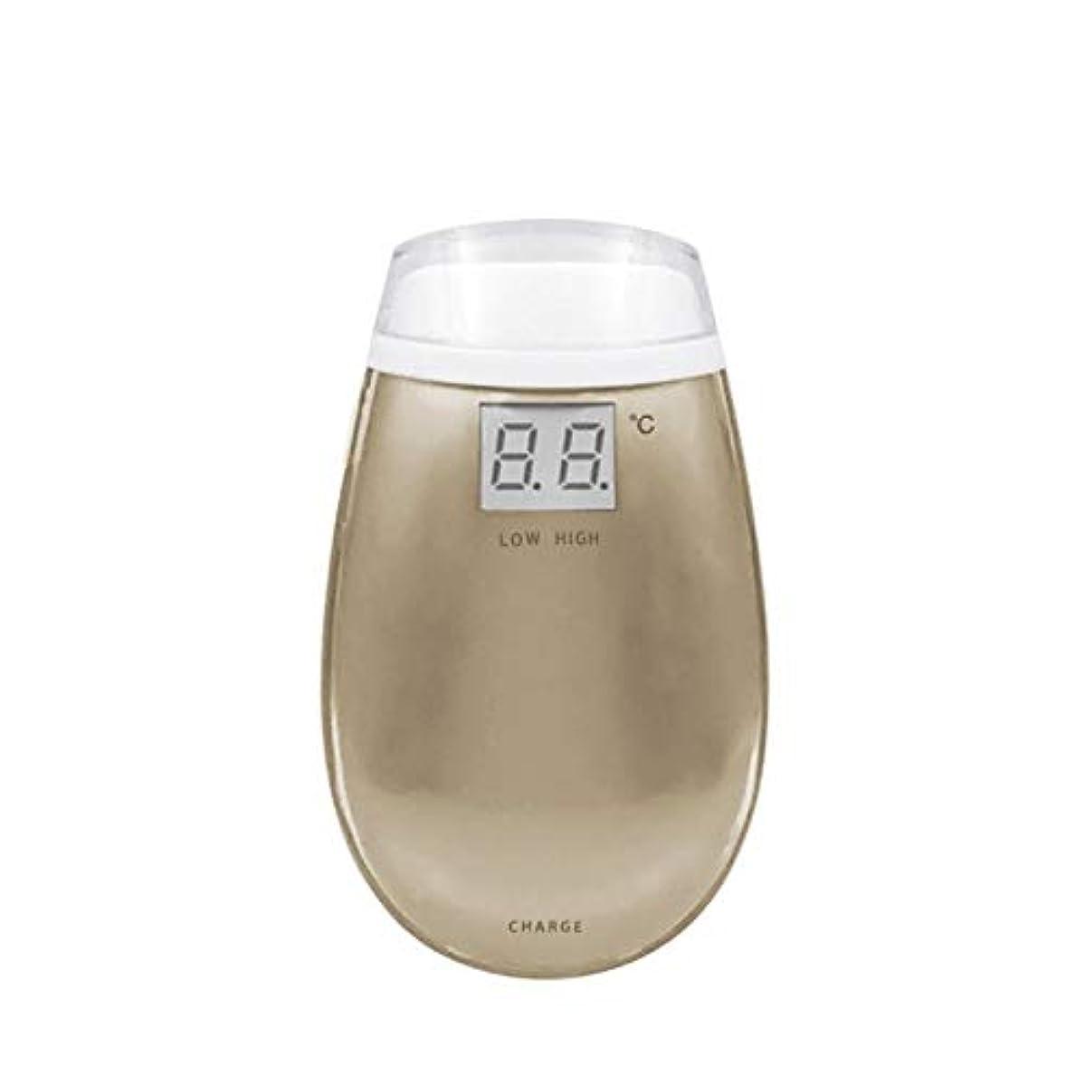 マンモスなめらか方程式KYAWJY RF美容機器ホーム電子美容機器肌引き締め美容機器