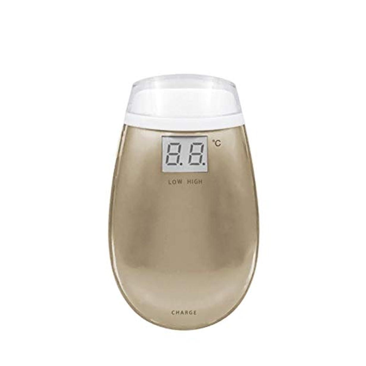 公式水平効果的にLishangl RF美容機器ホーム電子美容機器肌引き締め美容機器