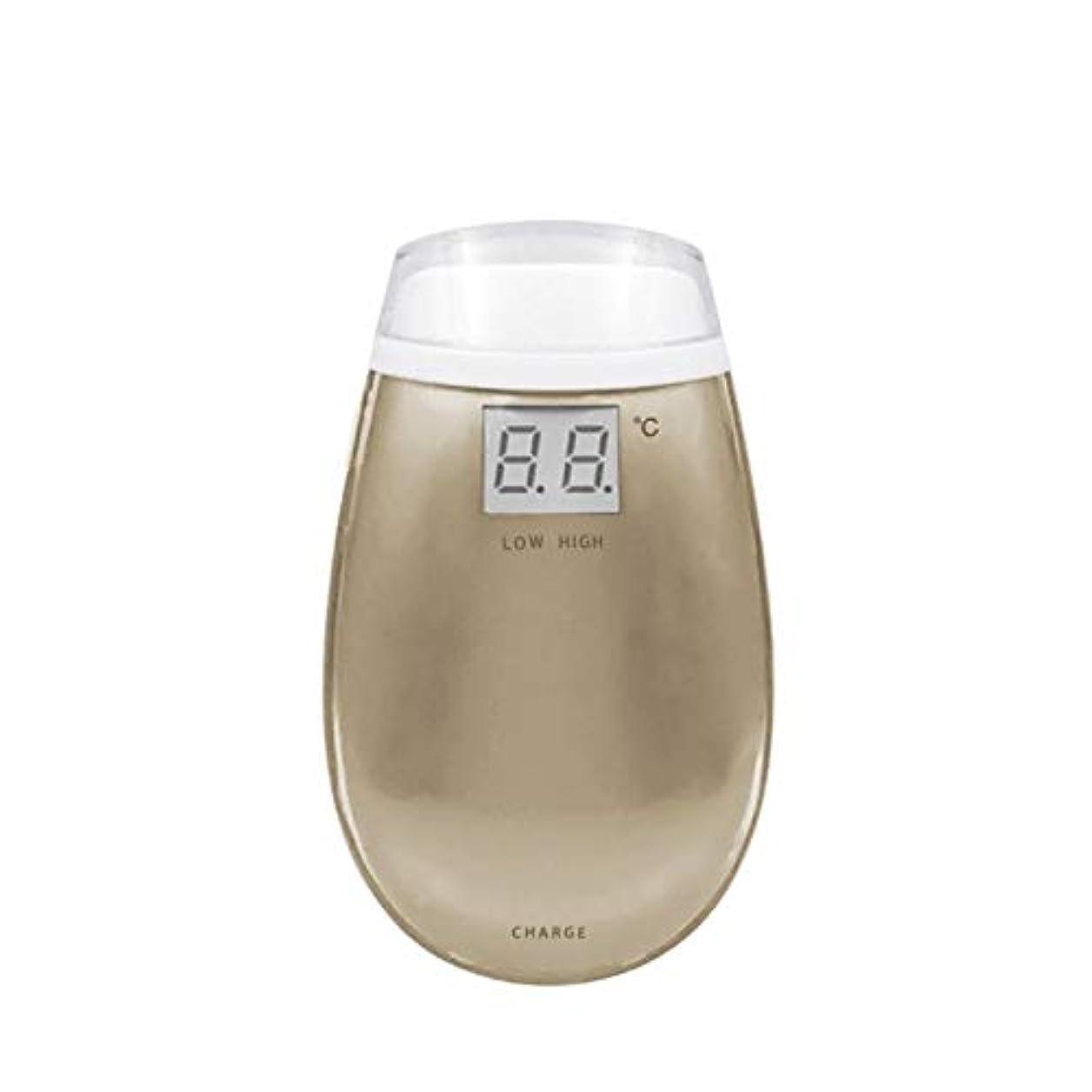 クライアント乳製品割るChennong RF美容機器ホーム電子美容機器肌引き締め美容機器