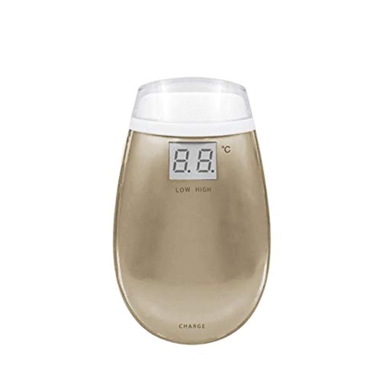 覚醒偶然ファセットCetengkeji RF美容機器ホーム電子美容機器肌引き締め美容機器