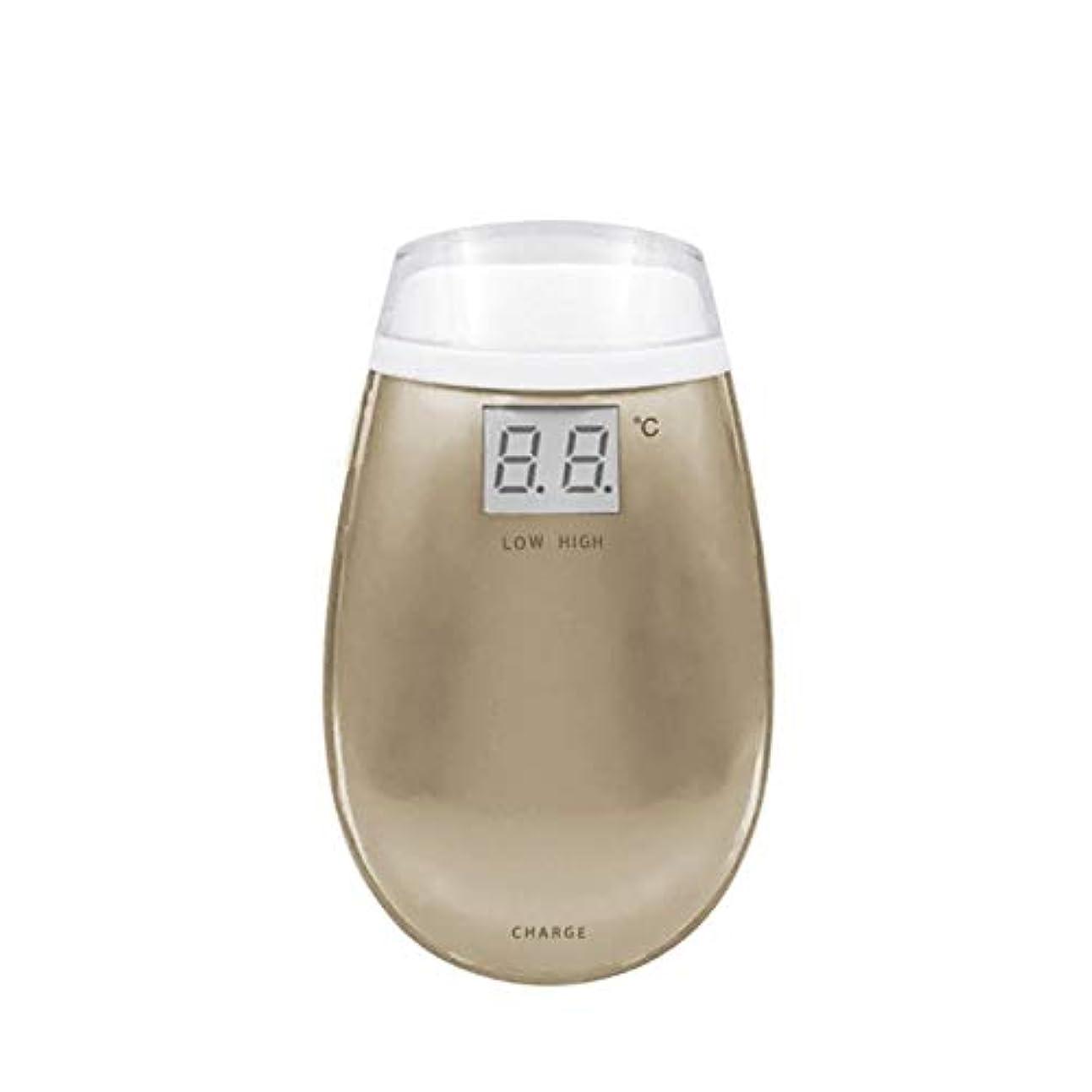 過度の咽頭境界Cdket RF美容機器ホーム電子美容機器肌引き締め美容機器