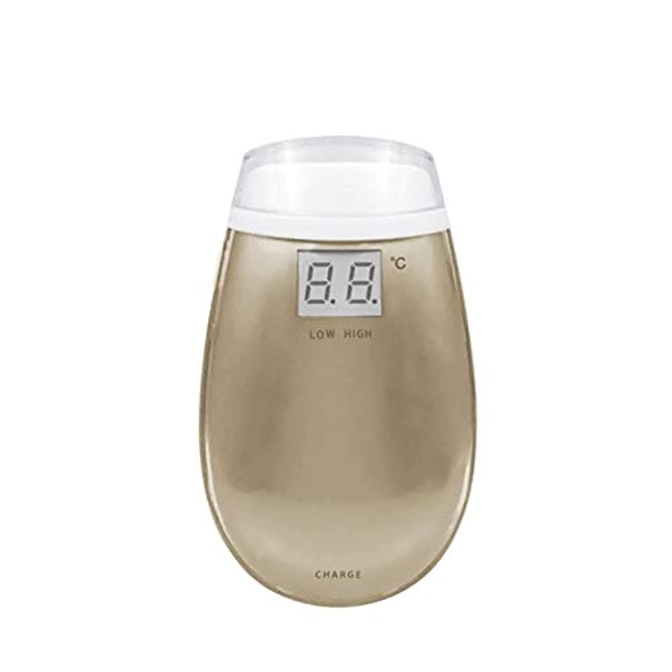 積分寝る傾斜Cetengkeji RF美容機器ホーム電子美容機器肌引き締め美容機器