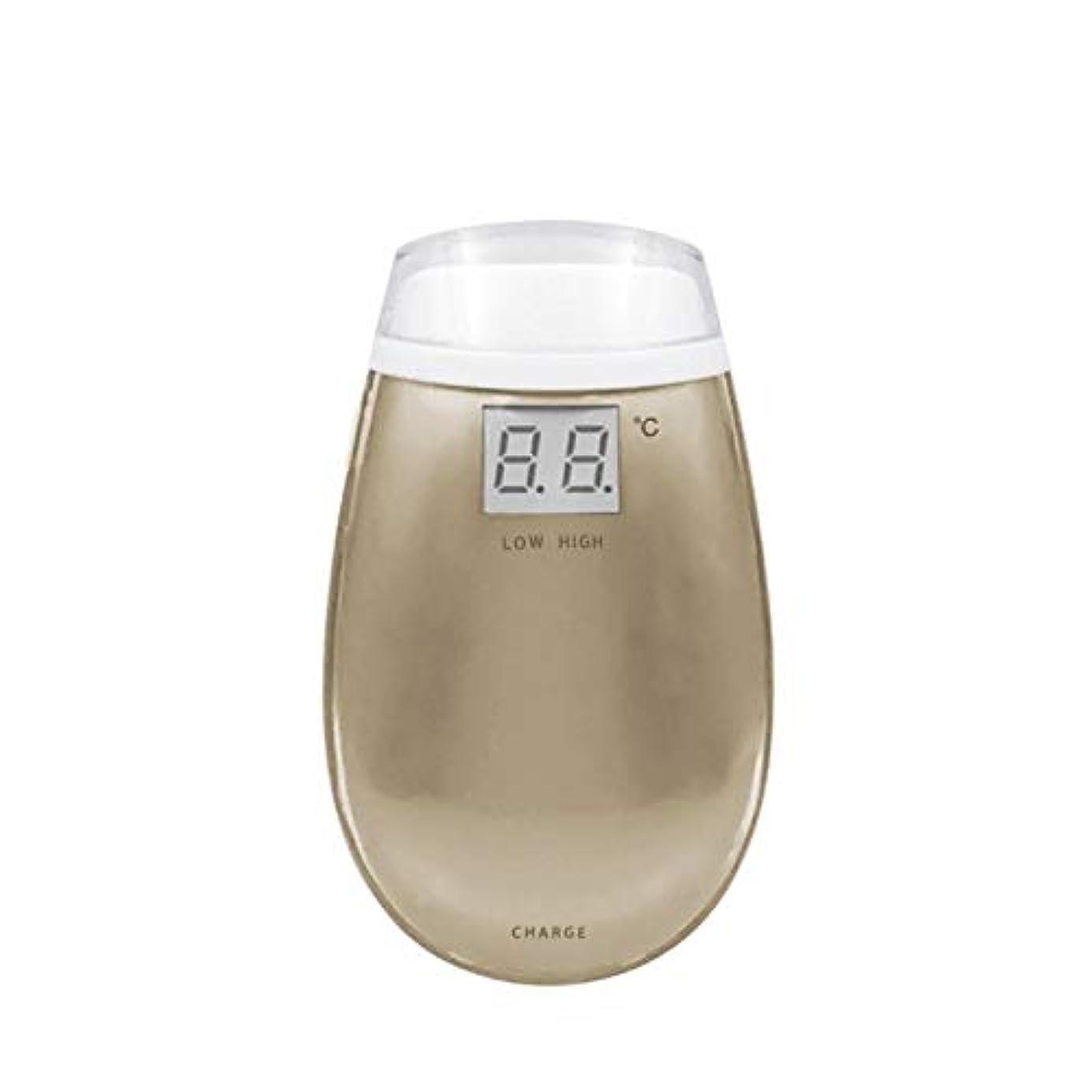 蒸発するエリート乗算Chennong RF美容機器ホーム電子美容機器肌引き締め美容機器