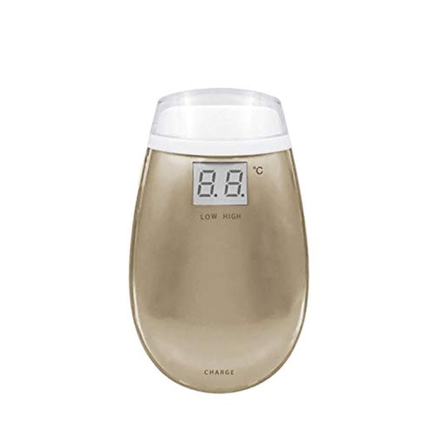 わずかな対話系譜Cetengkeji RF美容機器ホーム電子美容機器肌引き締め美容機器