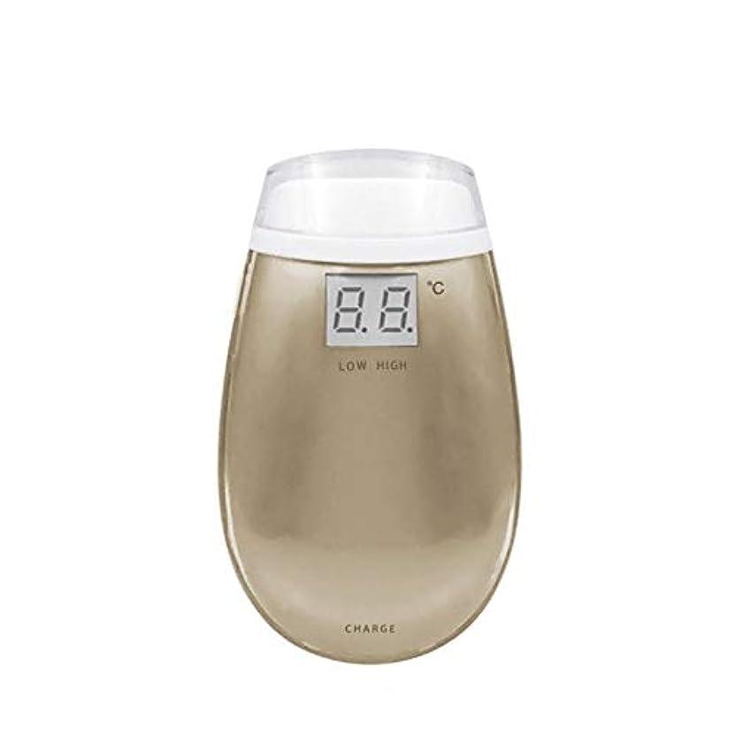 バックアップ控えめなリルCetengkeji RF美容機器ホーム電子美容機器肌引き締め美容機器