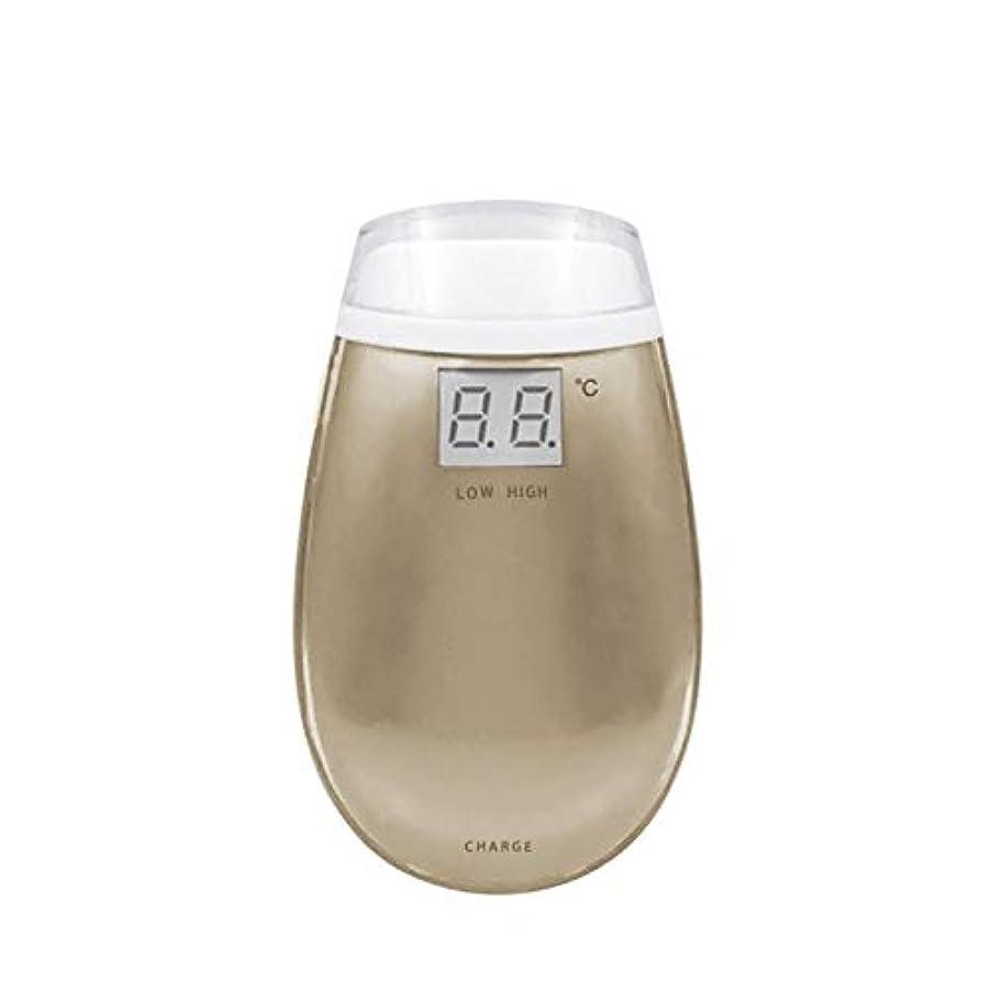 一杯入射代わりのCdket RF美容機器ホーム電子美容機器肌引き締め美容機器