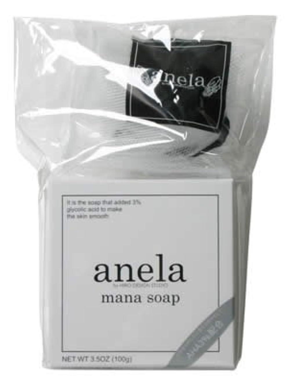 おいしい希望に満ちた代表してanela アネラ マナソープシスター 100g 泡立てネット付