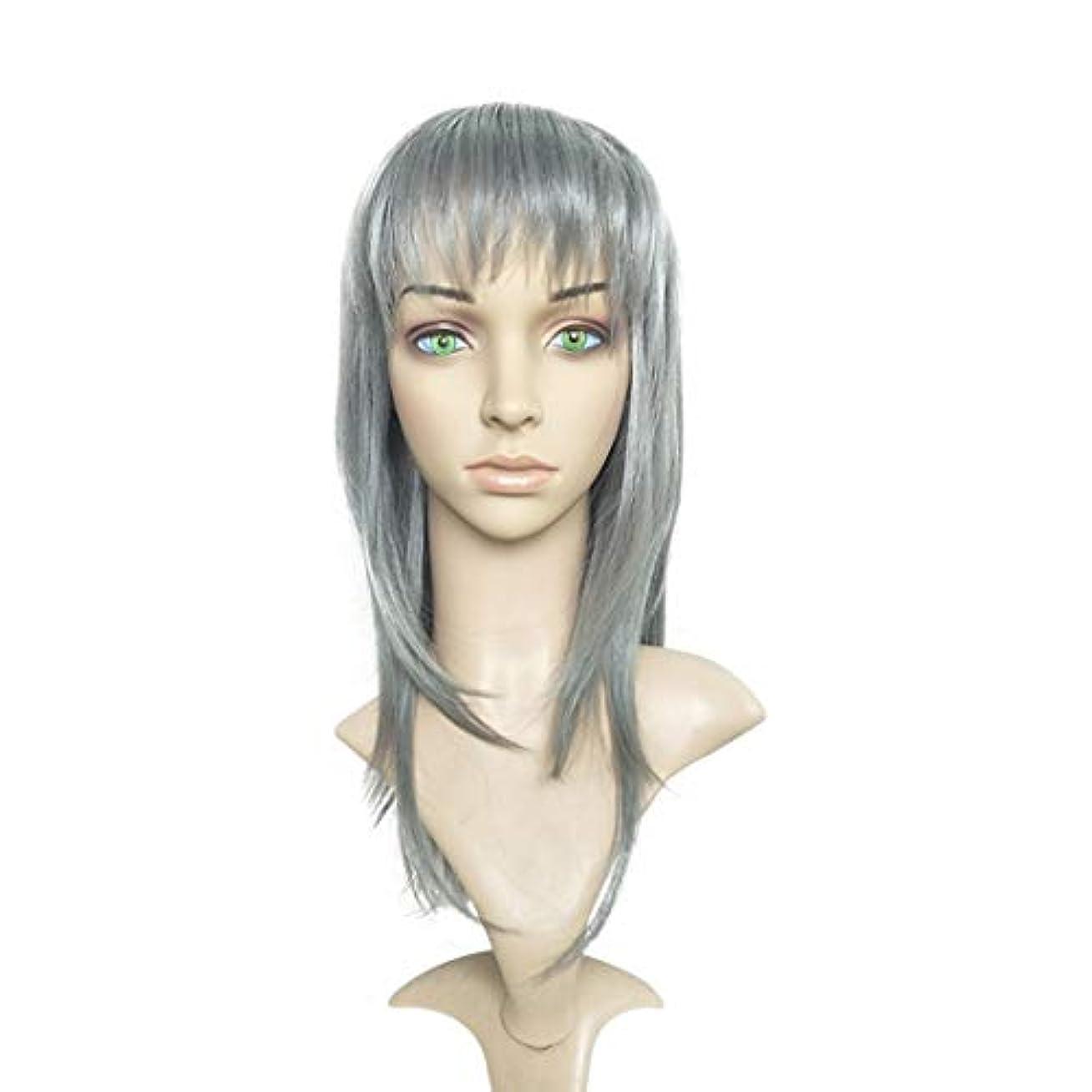被る拮抗レジJIANFU ヨーロッパとアメリカのパーティーウィッグシルバーグレーブロークンバングストレートヘアウィッグ (色 : Silver gray)