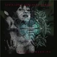 Trance Mutation/Shotgun Weddin