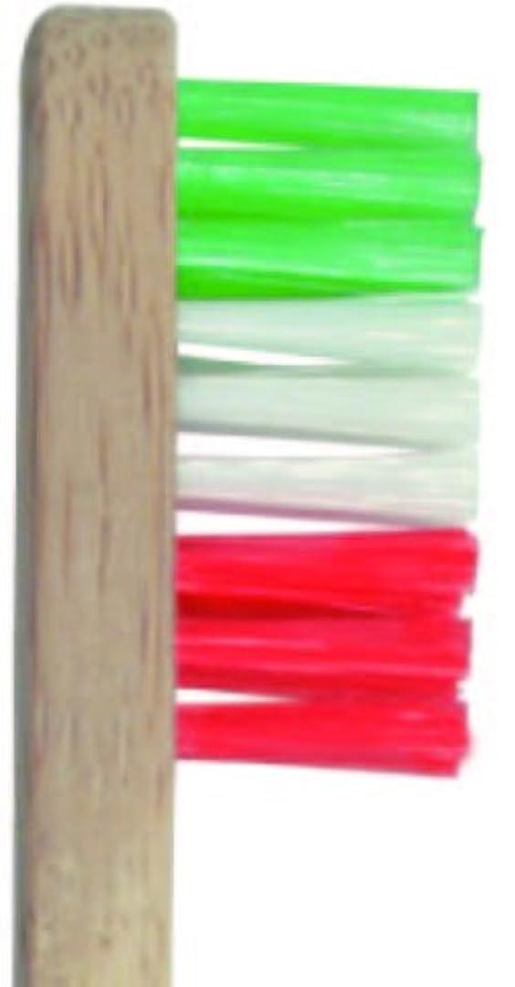 褐色ハードリング簡単にPlentz プレンツ 竹ハブラシ (グリーン)