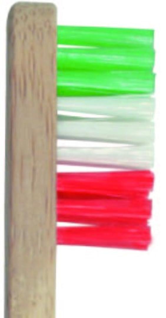 福祉近所の報酬のPlentz プレンツ 竹ハブラシ (グリーン)