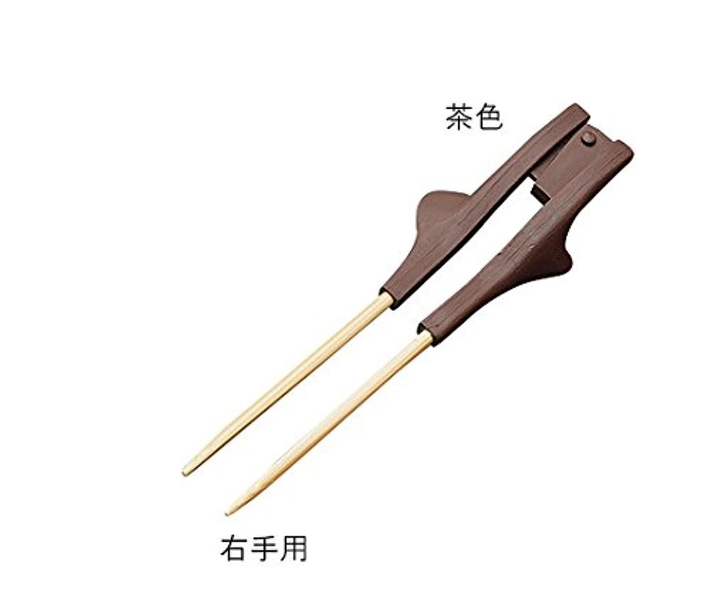 さておき完了これまで箸ぞうくん クリアⅡ (自助食器) 茶色、右手用 約220mm