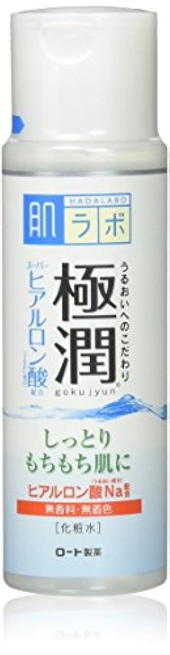 ムスタチオ句吹きさらし肌研(ハダラボ) 極潤 ヒアルロン液 170mL [並行輸入品]