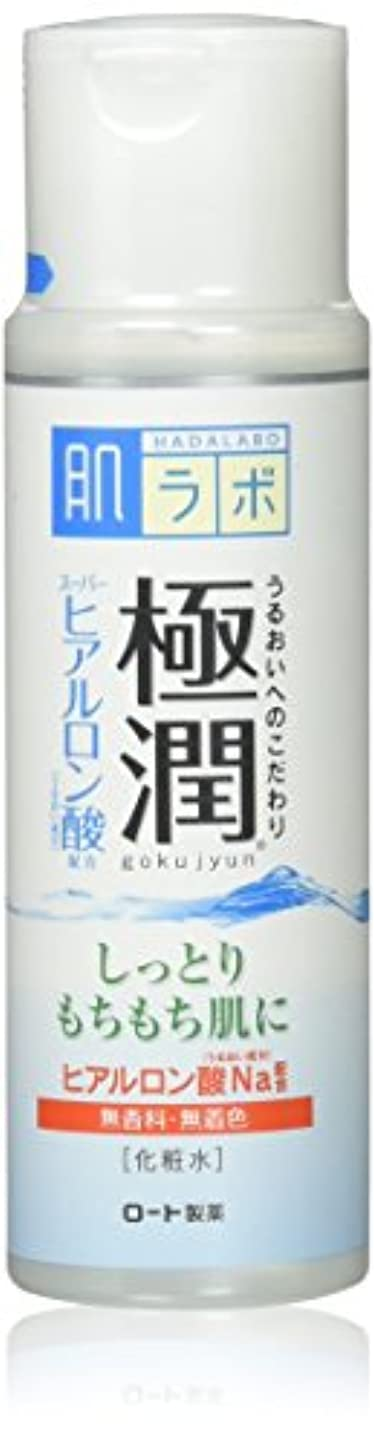 示す仮装誰か肌研(ハダラボ) 極潤 ヒアルロン液 170mL