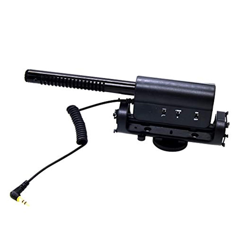 甘い足音たとえGRALARA D-598マイク 3.5mm入力ソケット 騒音低減 スタジオ/インタビュー適用